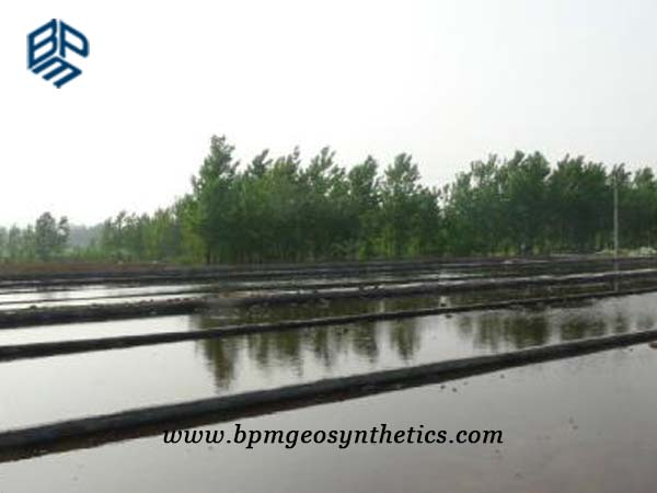 Fish Pond Liners in Philippines