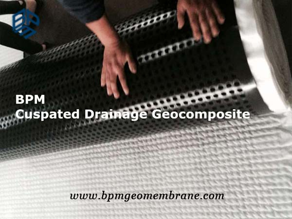 HDPE dimpled Drainage Board with Geotextile Used for Garden Roof