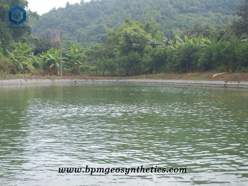 Geomembrane Pond Liner for Fish Farm Project Venezuela