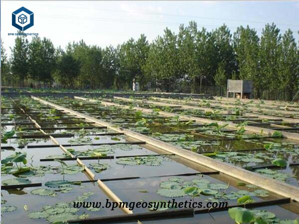 HDPE Impermeable Membrane